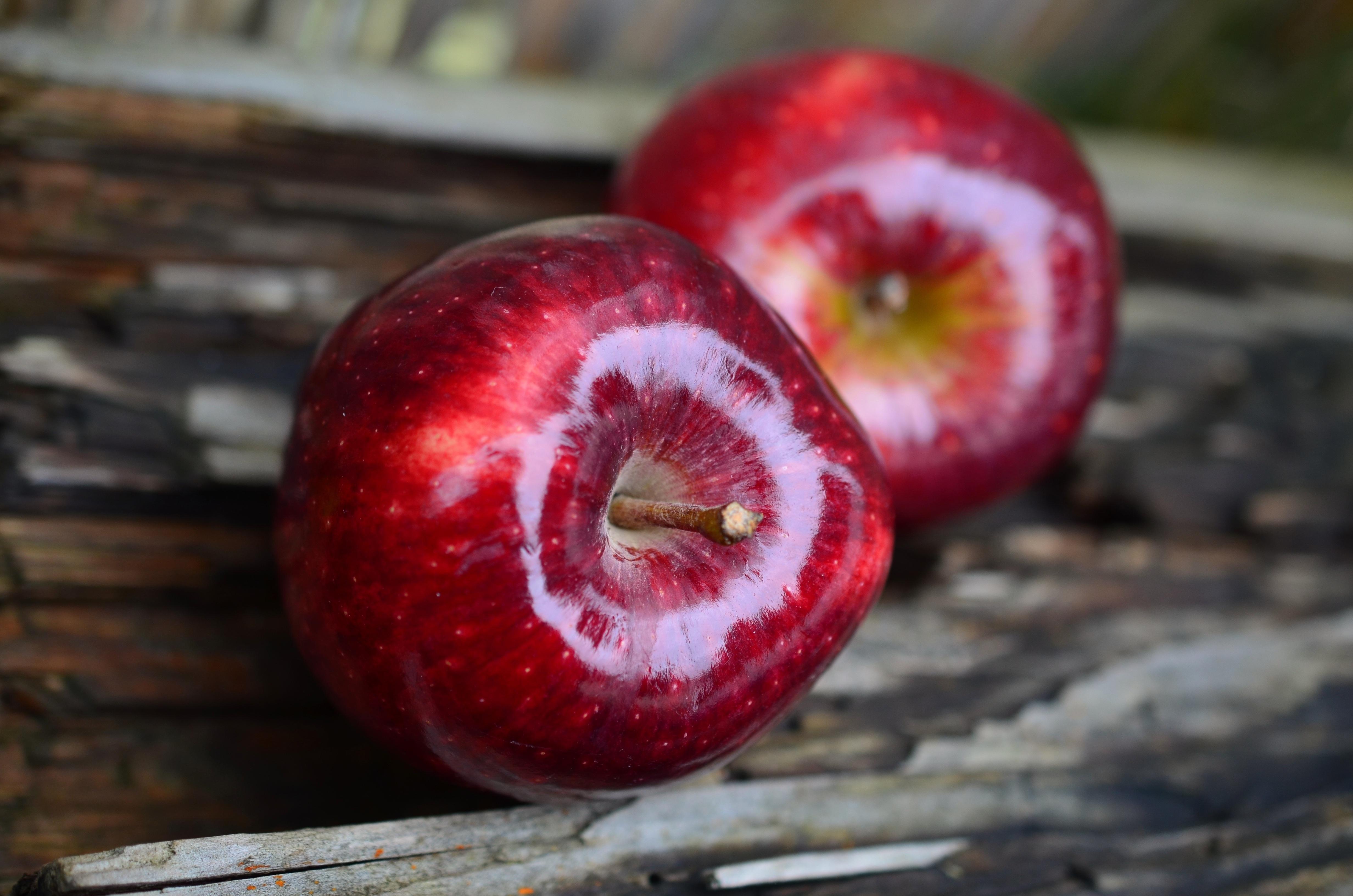 apple-plant-fruit-flower-ripe-food-746445-pxhere.com.jpg